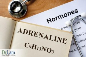Adrenal-Fatigue-Treatment